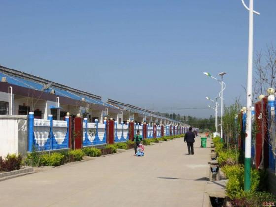 太阳能路灯亮化系列案例